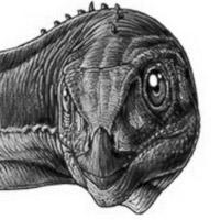 chilesaurus-blanco-y-negro